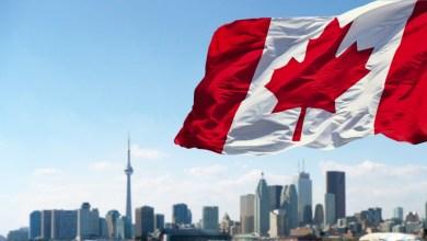 أحد الشركات الكندية تتخلص من الايثيريوم و مونيرو مقابل الحصول على البيتكوين