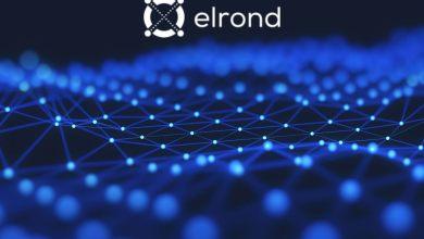 """ما هو مشروع """"Elrond"""" وعملته الرقمية """"EGLD""""؟ وماهو محور عمله؟"""