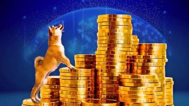 """قيمة الأصول المغلقة في """"ShibaSwap"""" التابعة لـ """"Shiba Inu"""" تصل لأكثر من 1.5 مليار دولار"""