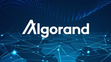 """مؤسسة """"Algorand"""" تطلق صندوق 300 مليون دولار لدعم مشاريع التمويل اللامركزي DeFi"""