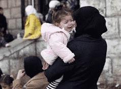 حق اللجوء و الحماية في ألمانيا