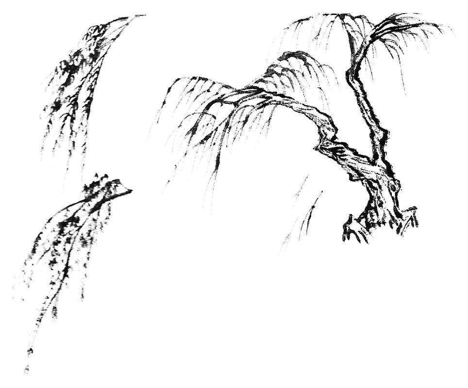 اللوحة الصينية : willowe