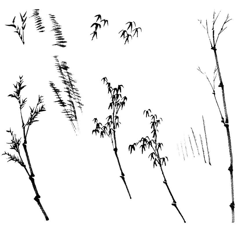 اللوحة الصينية : الخيزران