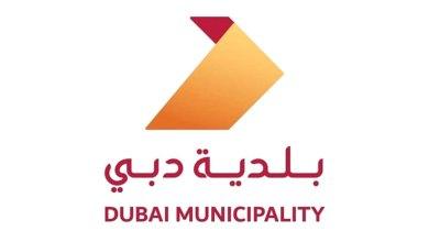 Photo of بلدية دبي راع رسمي للألعاب الحكومية