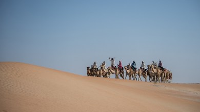 Photo of Emiratis and expats set off to a two-week Camel Trek across the UAE desert