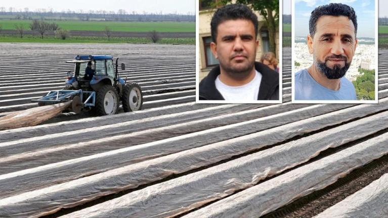 صحيفة ألمانية تسلط الضوء على لاجئين سوريين يبدون استعدادهم للعمل كمزارعين