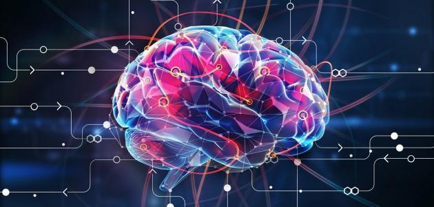 طرق تنمية الذكاء..مقال مفيد