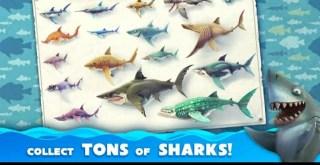 تحميل لعبة جائع القرش Hungry Shark World النسخة المدفوعة للاندرويد 2020