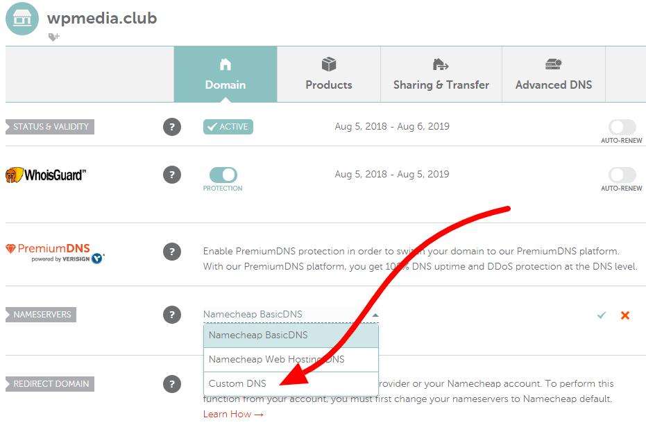 custom DNS