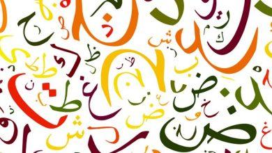 صورة بحر العربية الجميل : بمناسبة مرور يوم اللغة العربية