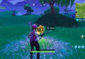Fortnite Battle Royale Battle Star