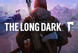 The Long Dark Survival Game