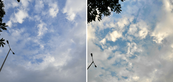 Honor-Play-vs-Poco-F1-camera-2