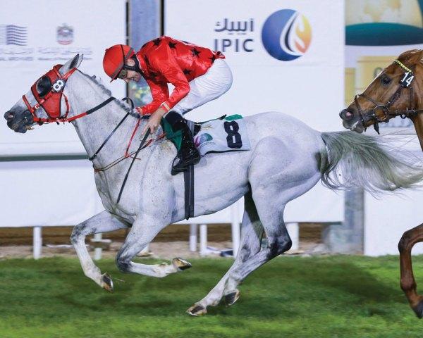 Sheikh Zayed bin Sultan Al Nahyan Jewel Crown