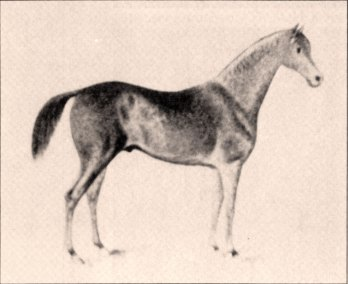04-189301
