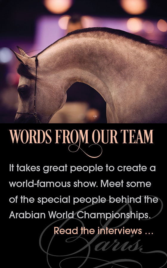 Words from our Team