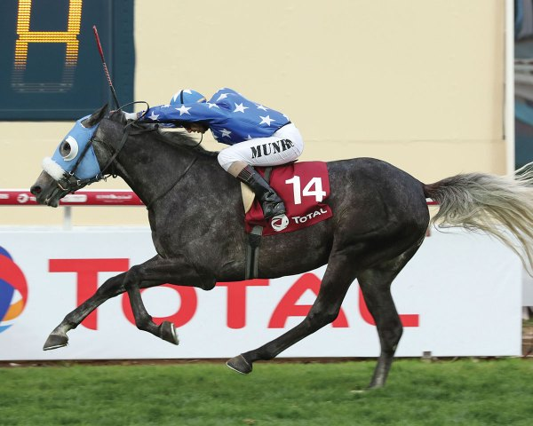 Top International Racehorses, Ranking Charts