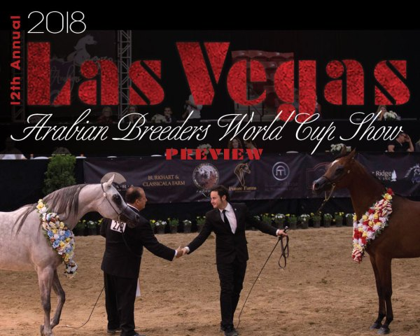 2018 Las Vegas Arabian Breeders World Cup Show Preview