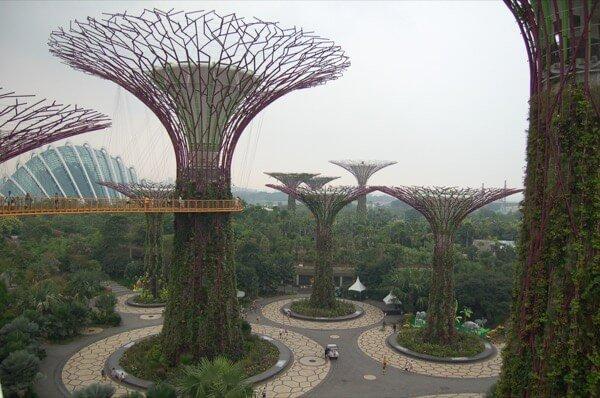 Singapore September 2015 Supertrees Arabian Notes 5