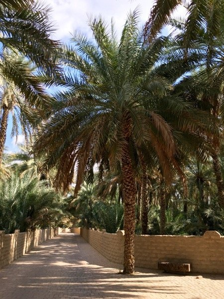 Things to do in Al Ain Arabian Notes January 2016 43