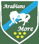 Arabiand & More Logo