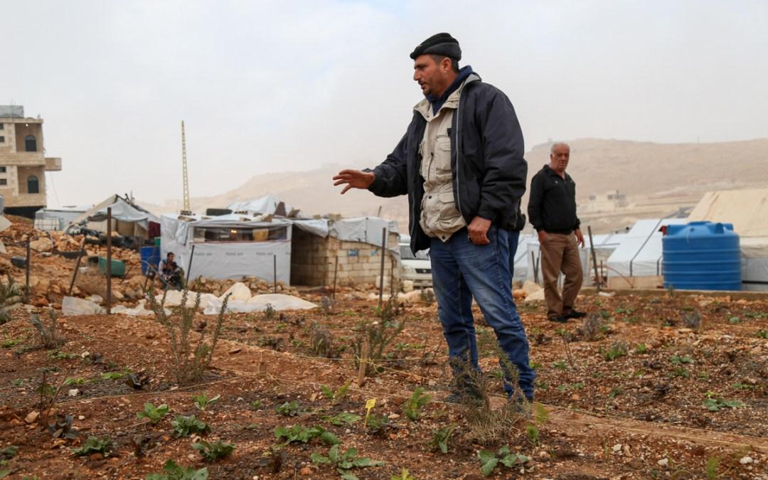 في عرسال، يعتمد اللّاجؤون السّوريّون على الزّراعة المستدامة!