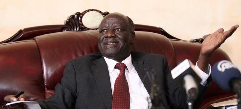 د.لام اكول، رئيس حركة الديمقراطية الوطنية (NDM) والأمين العام لتحالف معارضة جنوب السودان (الصورة عبر رويترز)