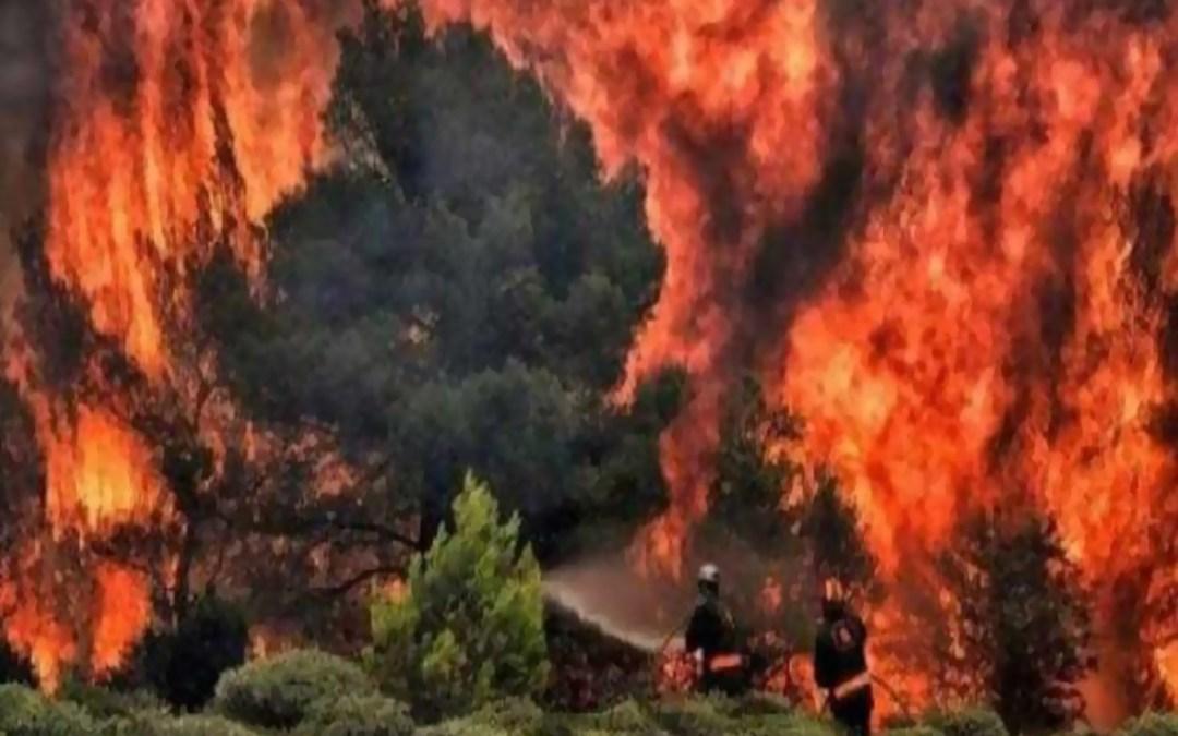 44 الف جندي برازيلي لمكافحة حرائق الأمازون