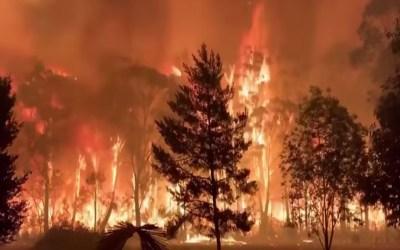 أوستراليا فقدت الاتصال بطائرة تشارك في إخماد حرائق الغابات