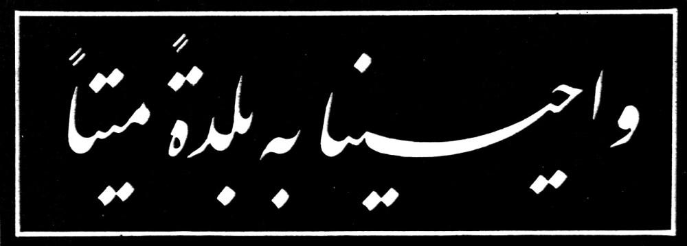 الحاج خليل الزهاوي (4/5)