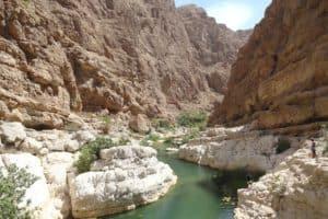 Oase in der Wüste - Wadi Shab