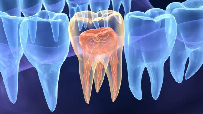 Conservative Dental Treatment