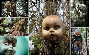 Photo of شاهد….جزيرة الرعب في المكسيك