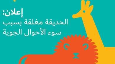 Photo of سفاري دبي تغلق أبوابها مؤقتاً بسبب…..