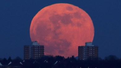 """Photo of صور خلابة.. العالم يشهد """"القمر الأزرق الدموي"""""""
