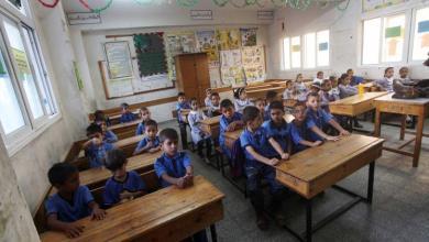 Photo of وظائف في قطر.. ملاذ الخريجين في غزة