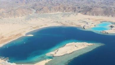"""Photo of كل ما تريد معرفته عن مشروع """"أمالا""""..ريفيرا الشرق الأوسط"""