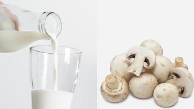 Photo of الحليب والفطر ينظمان غلوكوز الدم