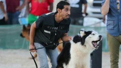Photo of قصة موجعة.. سعودي تفنن بإيذاء القطط تحول لمنقذ حيوانات