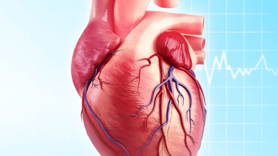 Photo of النمر: 5 نصائح لتجنب الإصابة بأمراض شرايين القلب