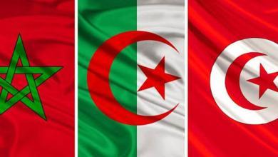Photo of تونس تقود وساطة بين الجزائر والمغرب.. لحل الخلافات