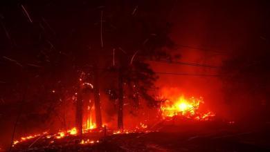 Photo of قصة الجنة التي حولتها الحرائق إلى واد من جحيم