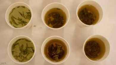 "Photo of حقيقة الشاي الأخضر.. 8 خصائص ""فاصلة"""