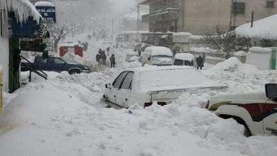 Photo of موجة برد في تونس والجزائر تخلف خسائر بشرية ومادية