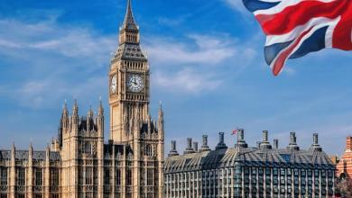 Photo of من هي قريبة الأسد التي تعيش سراً في بريطانيا؟