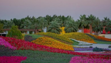 """Photo of استعدادات لإطلاق """"مهرجان الزهور والحدائق بينبع الصناعية"""""""