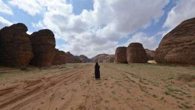 "Photo of ""الفاو"" تحذر من خطر الجراد في السودان والسعودية ومصر"
