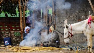 Photo of جرائم الميراث في صعيد مصر