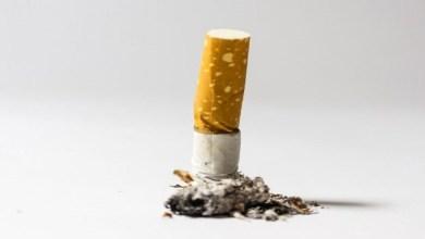 """Photo of السجائر """"الخفيفة"""" تزيد من فرص إدمان التدخين!"""