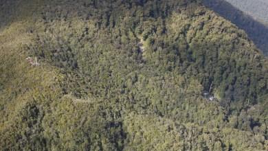 Photo of شرطة نيوزيلندا تؤكد تحطم طائرة خفيفة ومقتل طيارها